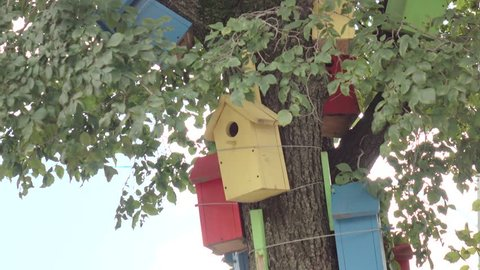 The birdhouses .Colorful wooden bird tree house. To illustrate the housing problem.