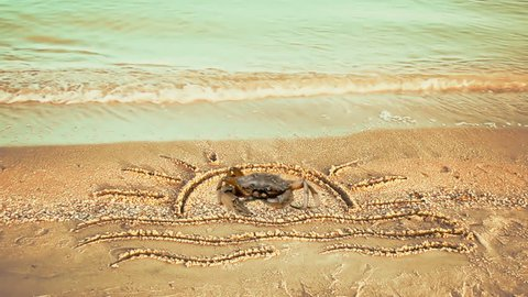 The drawing of the sun on the beach and a crab.	Crab on the beach.