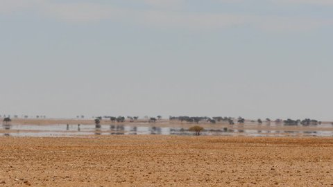 Fata Morgana - desert landscape in hot shimmering air with water illusion