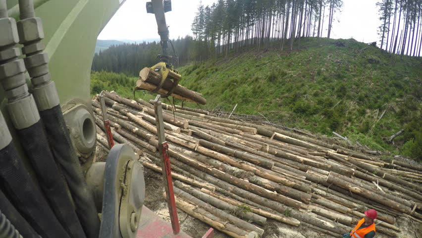 Woodwork industry loading logs with crane on a truck - point of view shot