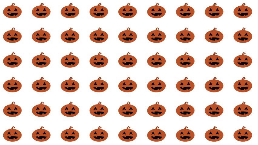 halloween pumpkin motion background loop white