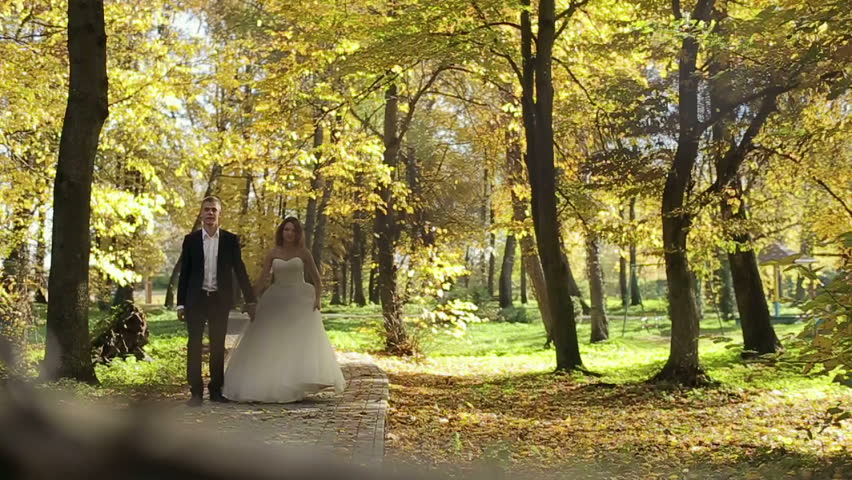 b24c650e0e2 Beautiful couple bride and groom walking in the autumn park. Slow motion