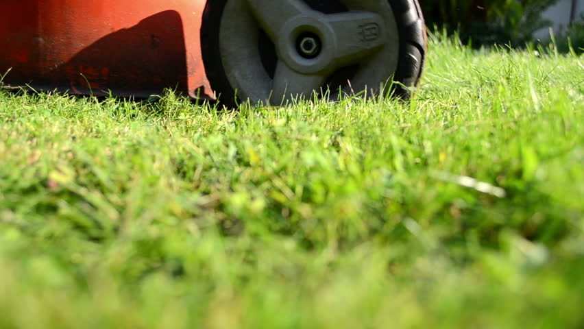meadow grass closeup and grass lawn cutter mower worker gardener pass and shadow.