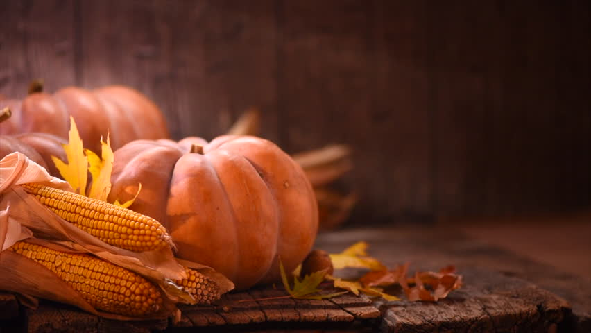 Thanksgiving Day. Pumpkin, Squash. Happy Thanksgiving Day wooden Table Background decorated with pumpkins, corn comb, candles and autumn leaves garland. Holiday Autumn festival scene, Fall, Harvest 4K   Shutterstock HD Video #32080723