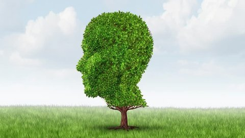 Alzheimer Memory loss video and brain aging due to dementia and alzheimer's disease as a medical icon of a group of  autumn fall trees shaped as a human head losing leaves on a white background.