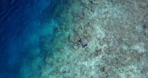 v11887 many people young boys girls snorkeling over coral reef with drone aerial flying view in crystal clear aqua blue shallow water