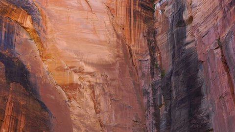 Zion National Park, Utah, Usa, North America, America