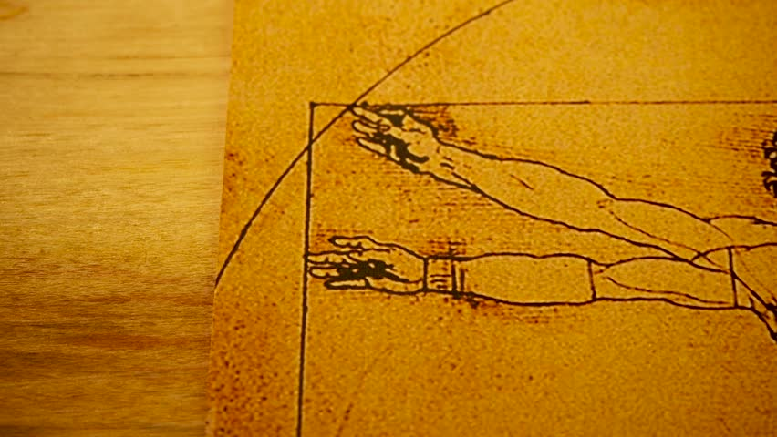 Artist painter Leonardo da Vinci Vitruvian Man close up photo.