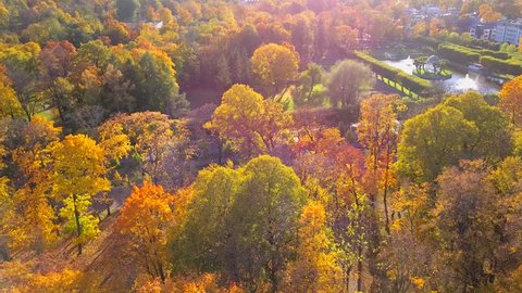 Aerial view of autumn, fall beautiful nature, forest and sea. During sunrise and sunset. Location at Europe, Estonia, city of Tallinn. Golden, yellow, orange, red, green leaves and trees. Park.