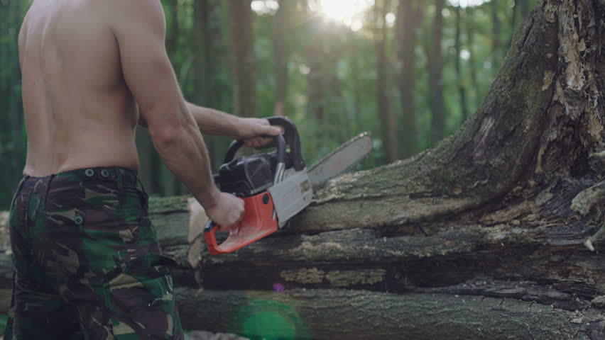 Handsome bearded logger sawing trees with chainsaw in the forest. 4K | Shutterstock HD Video #32422123