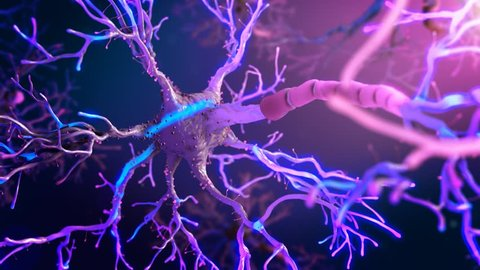Neuronal Purple and Pink Synapse Activity Real Animation inside the Human Brain. Various shots of neurons with electrical impulses.