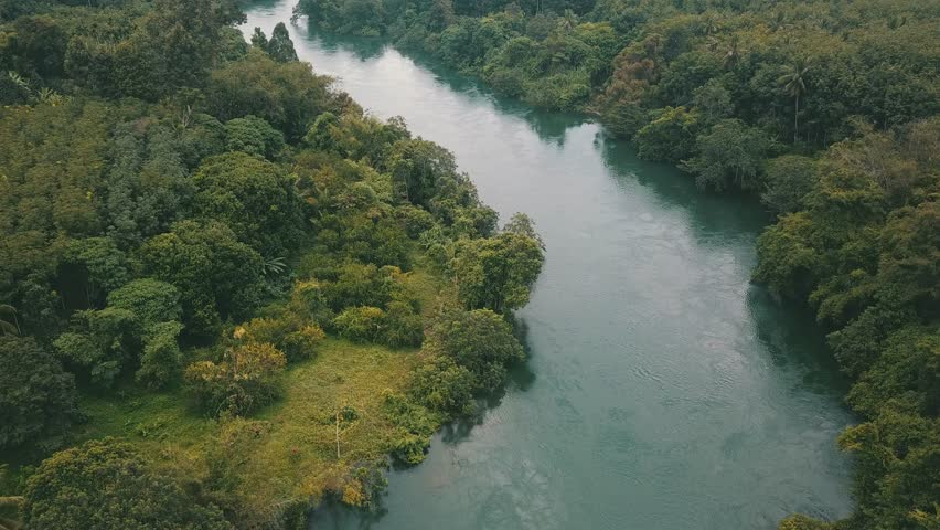 4K AERIAL: Flying above lush green jungle and  trees growing on mountains in water of a tropical lake