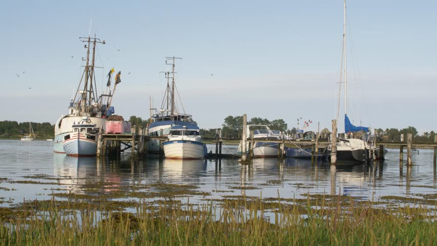 Old Wooden Nature Harbor With Stock Footage Video 100 Royalty Free 32694673 Shutterstock