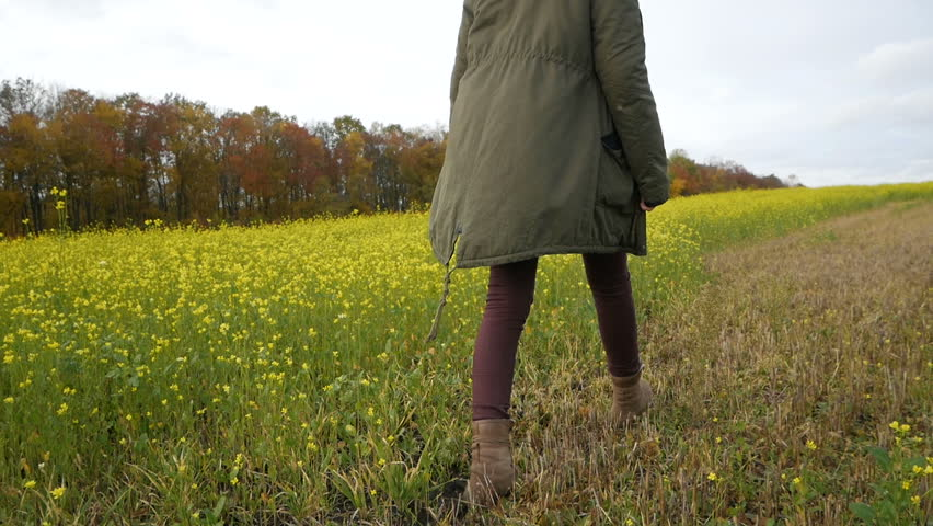 Beauty romantic girl walking alone through the yellow wheat rape field. Young woman enjoying nature outdoors. Solitude with nature.