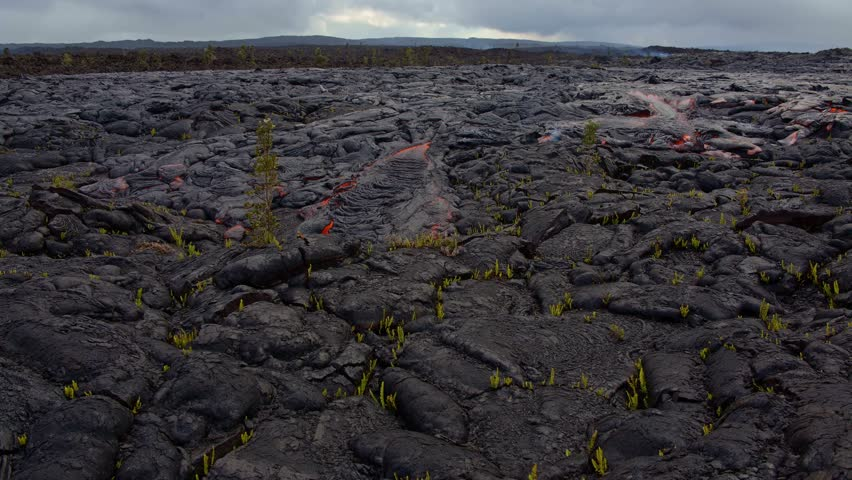 Lava destroys plant time lapse Day daytime Glowing Hot flow from Kilauea Active Volcano Puu Oo Vent Active Volcano Magma