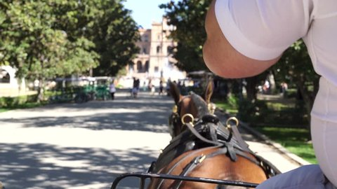 Horse carriage ride to Plaza de Eapana, Sevilla