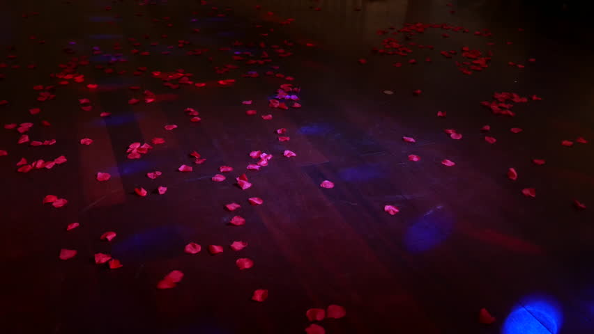 People dance on the dance floor