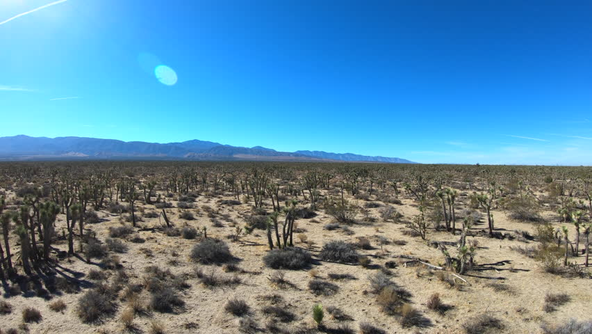 Ascending aerial view of Mojave Joshua Tree desert landscape between in Southern California.     Shutterstock HD Video #33274183