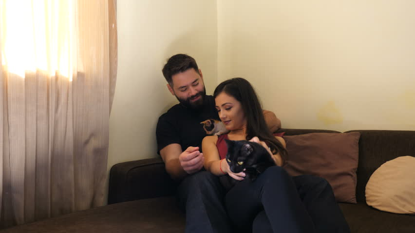 Beautiful young couple in the living room relaxing and playing with their cats. One cat is black and the other is red. Animal lovers