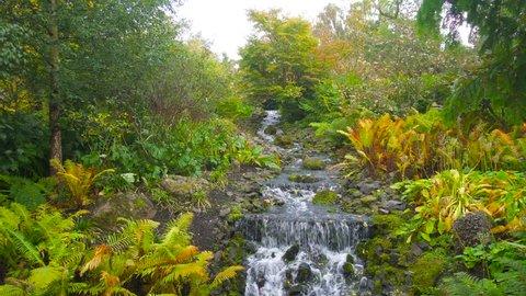 Beautiful Waterfall in Royal Botanic Garden in Edinburgh, Scotland