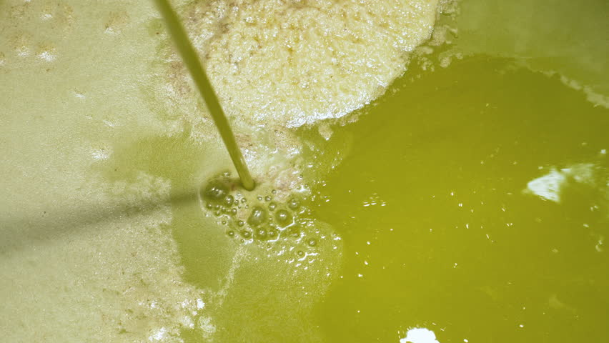 South of Italy- freshly olive oil flowing - Olive Oil Mill #33605653
