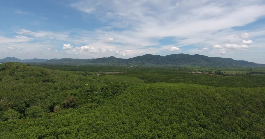 Bird's eye view of beautiful scenic forest and plantation and high mountains with green landscape on horizont under blue sky with white clouds.Video of tropical green terrain near high hills