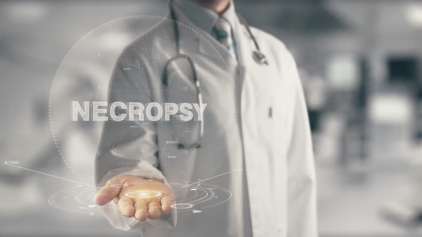 Header of necropsy