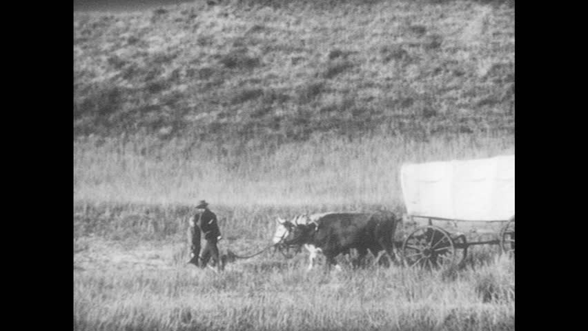 1940s: Man and boy lead bulls attached to covered wagon through field. Homestead marker on ground. Man helps woman down from covered wagon.