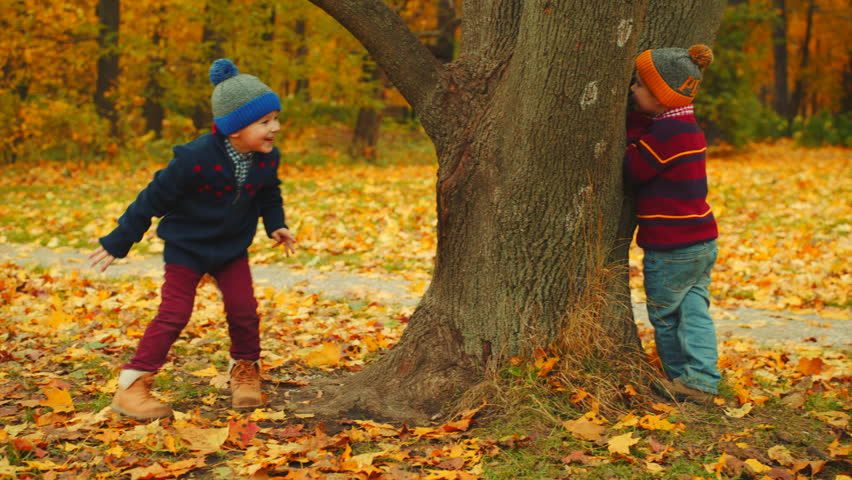 Little boys are playing hide-and-seek in the autumn park