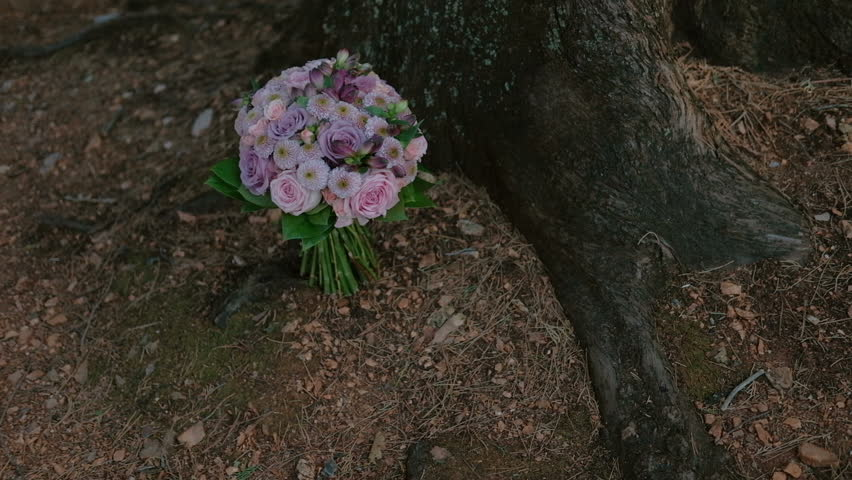 Close up wedding bouquet of pink roses near the tree outdoor  | Shutterstock HD Video #34293493