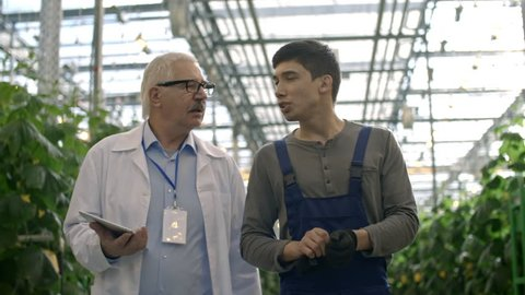Dolly of senior male agronomist in lab coat holding table and talking with young worker in overalls while walking through greenhouse