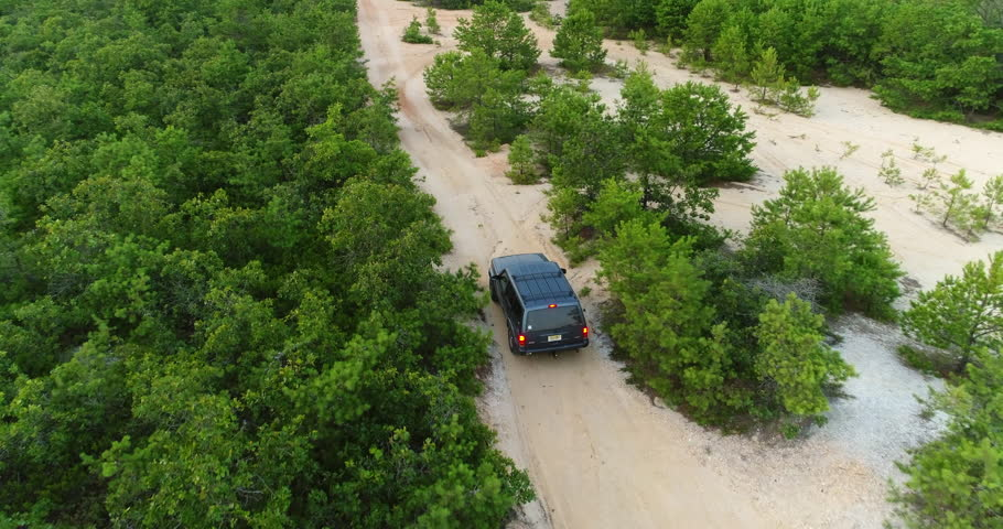 Aerial view of a sport utility vehicle driving on dirt roads in a forest of pine trees #34310743