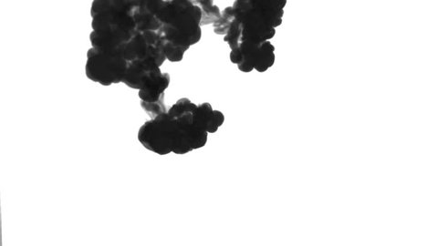 A lot of flows, black clouds or smoke, ink inject is isolated on white in slow motion. Black in water. Inky background or smoke backdrop, for ink effects use luma matte like alpha mask