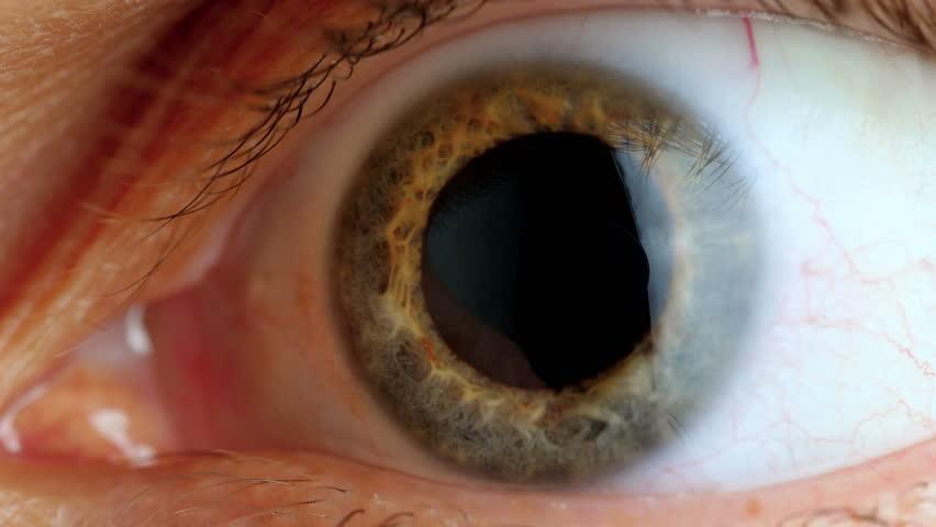 Human eye iris contracting. Extreme close up.  | Shutterstock HD Video #34874803