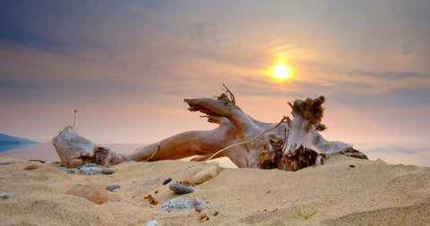 Timelapse beautiful sunset on the shores of lake Baikal, in the foreground the sand and driftwood, the sky beautiful clouds