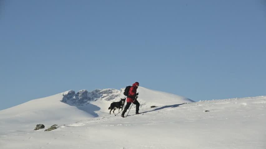Woman and Dog mountain skiing