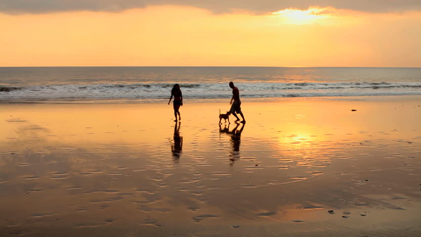 Animated Silhouette Couples Against Sunrise Stock Footage ...