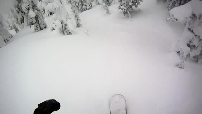 First Person View of Snowboarding in Glades Tree Run | Shutterstock HD Video #3716156