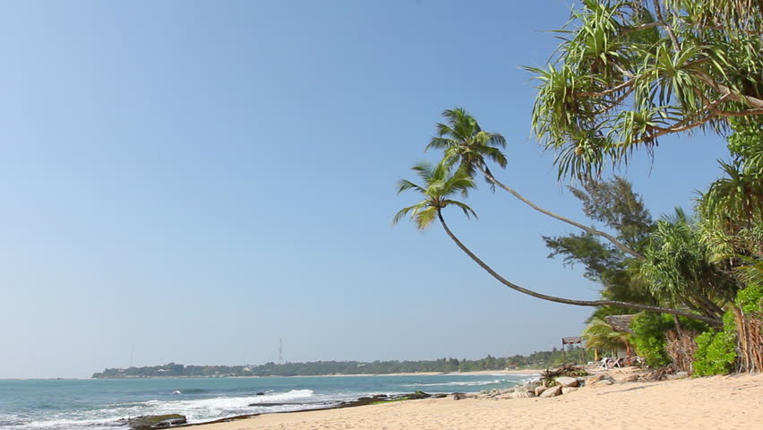 Tropical white sand beach with coconut trees, blue sky and sea.