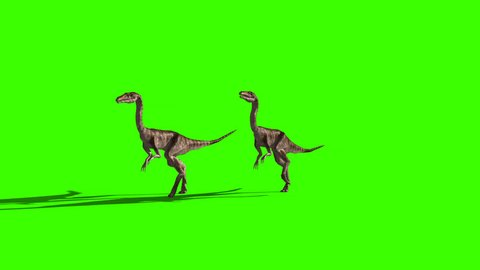 two dinosaurs on a green screen. different perspectives. sequence.