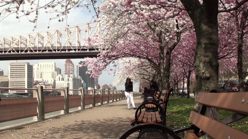 NEW YORK CITY - APRIL 16: