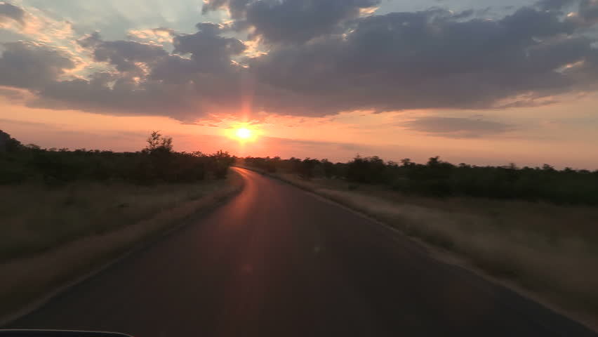 Game drive in kruger park   Shutterstock HD Video #4011883