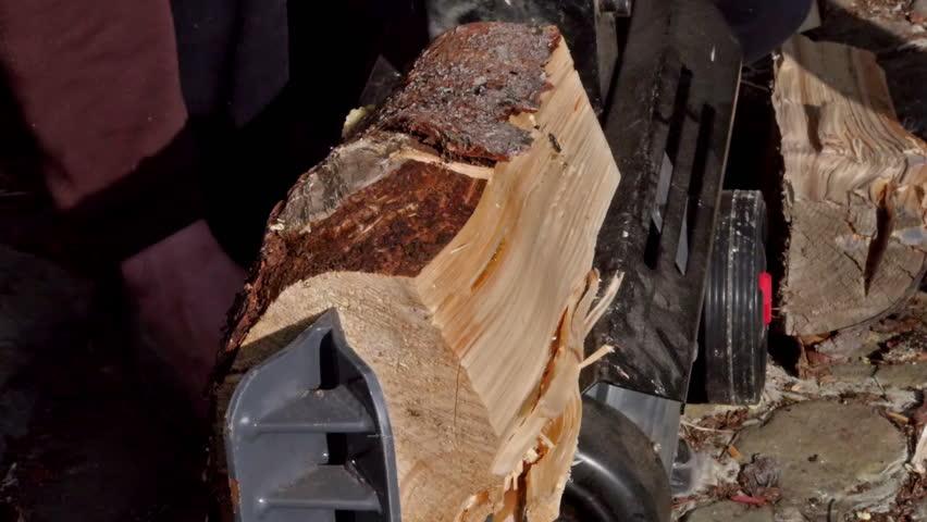 Crashing Half O a Log Stock Footage Video (100% Royalty-free) 4077733    Shutterstock