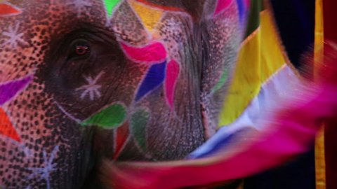 Close-up view of painted elephant head