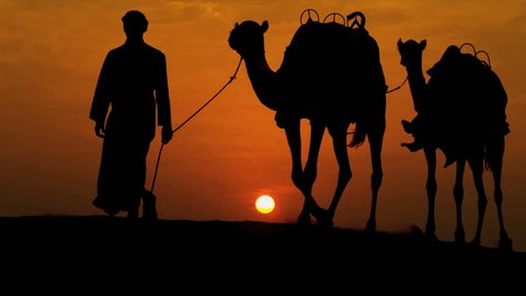 Arab male traditional headdress robe walking his camels over desert sand dunes silhouette sunset shot on RED EPIC