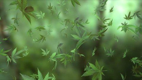 Loop-able animation of marijuana leaves