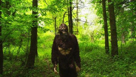 Sasquatch (Big Foot) walking through woods
