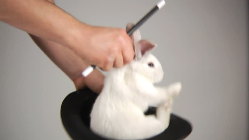 Magician pulls rabbit out of a hat