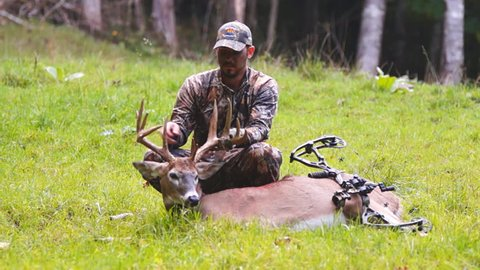 Bow Hunting Stock Video Footage - 4K and HD Video Clips | Shutterstock