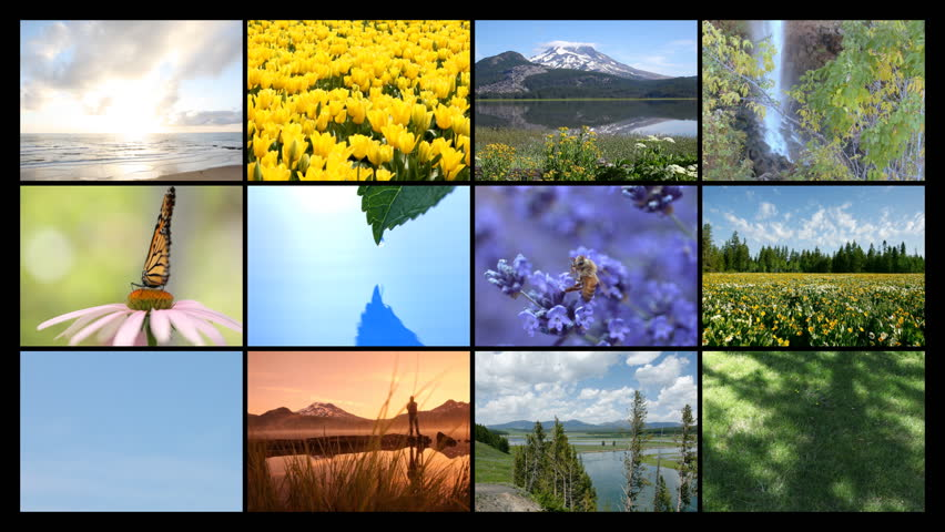 Collage Four Seasons Spring Summer Autumn Stock Photo 63357655 ...